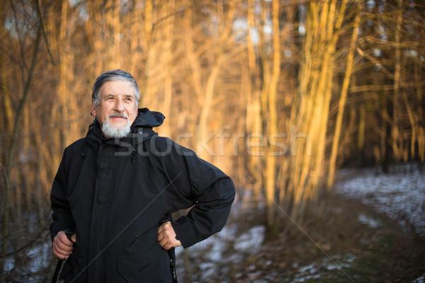 Senior man nordic walking, enjoying the outdoors Stock photo © lightpoet