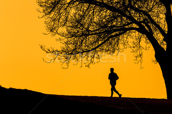Silhouette of a  young man running outdoors  Stock photo © lightpoet