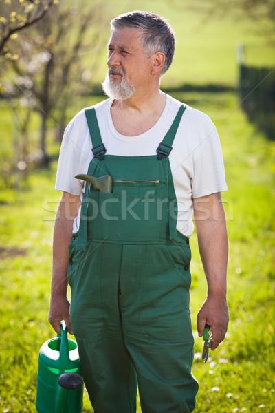 portrait of a senior gardener in his garden/orchard  Stock photo © lightpoet