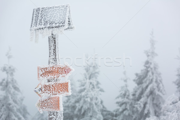 Extreme winter weather - hiking path sign covered with snow Stock photo © lightpoet