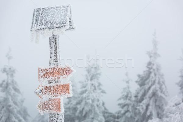 Extreme winter weer wandelen pad teken Stockfoto © lightpoet