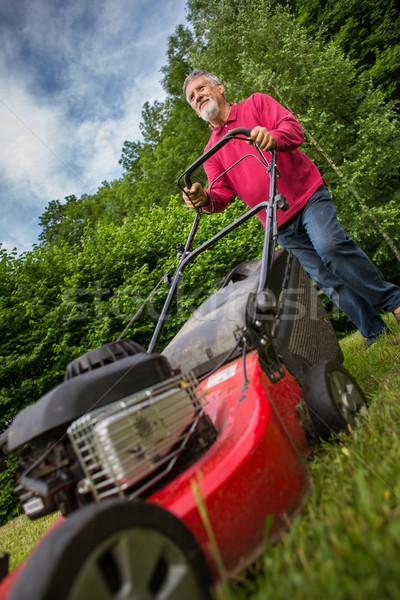 Senior man mowing the lawn in his garden Stock photo © lightpoet