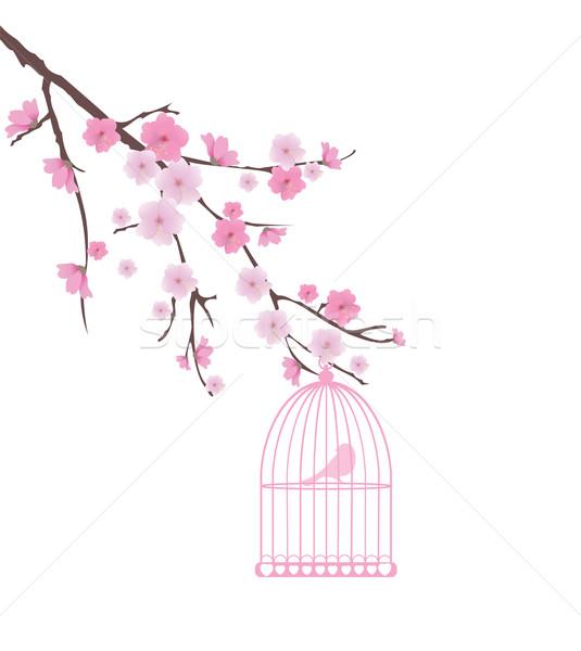Gaiola vetor cereja casa primavera Foto stock © lilac