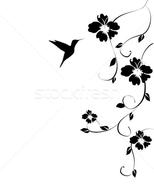 Hummingbird вектора продовольствие природы красоту лет Сток-фото © lilac