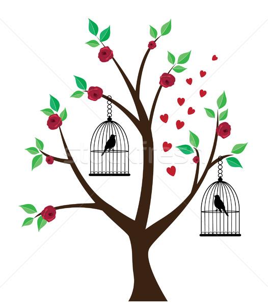 Gaiola vetor árvore aves casa natureza Foto stock © lilac