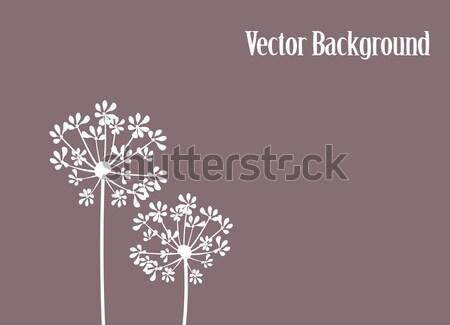 Beija-flor vetor flor primavera natureza projeto Foto stock © lilac