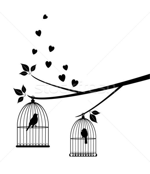 Stockfoto: Vogels · vector · liefde · huis · natuur · home