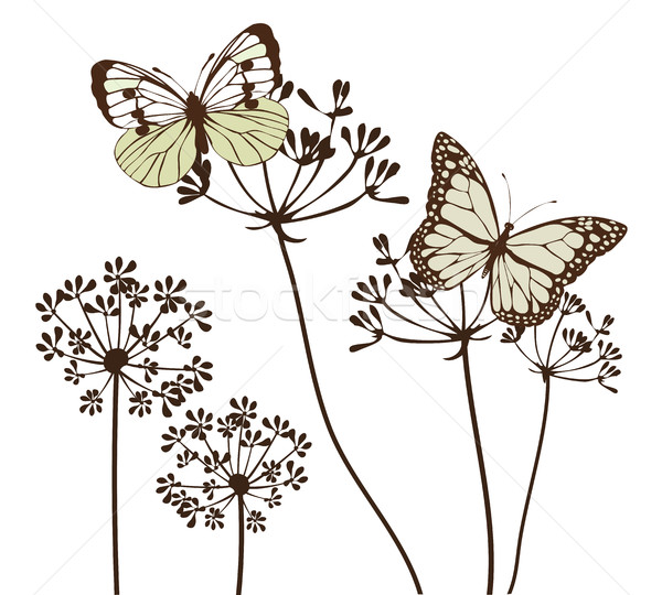 Vector vintage butterflies Stock photo © lilac