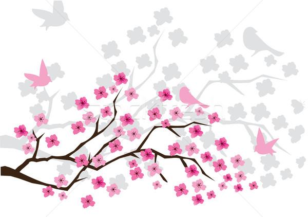 Stock fotó: Cseresznyevirág · vektor · tavasz · kert · művészet · élet