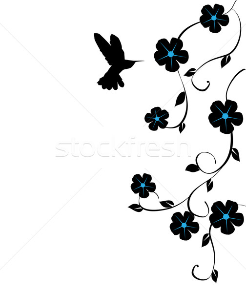 Hummingbird and flowers Stock photo © lilac