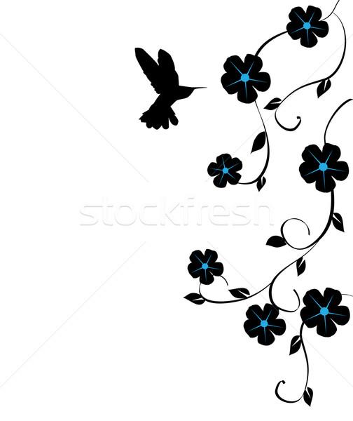 Beija-flor flores vetor comida natureza beleza Foto stock © lilac