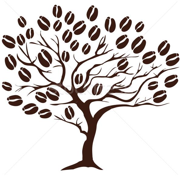 Coffee Tree Stock photo © lilac