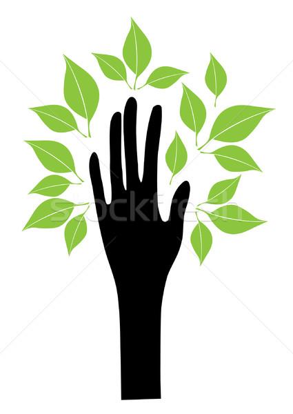 Hand Tree Stock photo © lilac