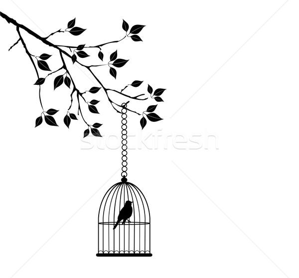 Gaiola vetor árvore casa primavera natureza Foto stock © lilac
