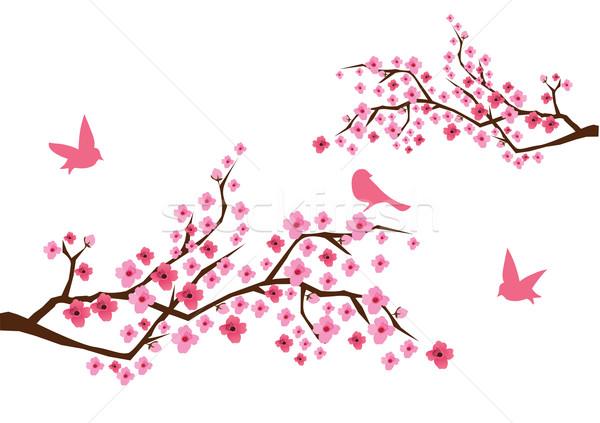 Cseresznyevirág vektor égbolt virág tavasz természet Stock fotó © lilac