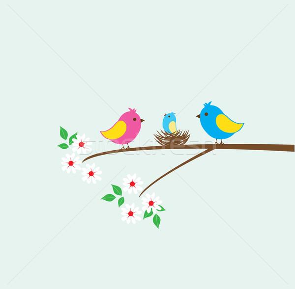 鳥の巣 ベクトル 鳥 家族 巣 幸せ ストックフォト © lilac