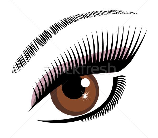eye brown vector  Stock photo © lilac