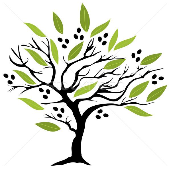 Olijfboom olijven boom voedsel ontwerp blad Stockfoto © lilac