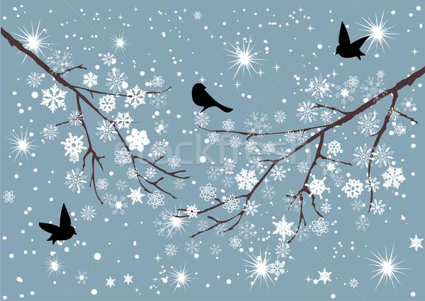 Stockfoto: Sneeuw · vector · sneeuwvlokken · vogels · boom