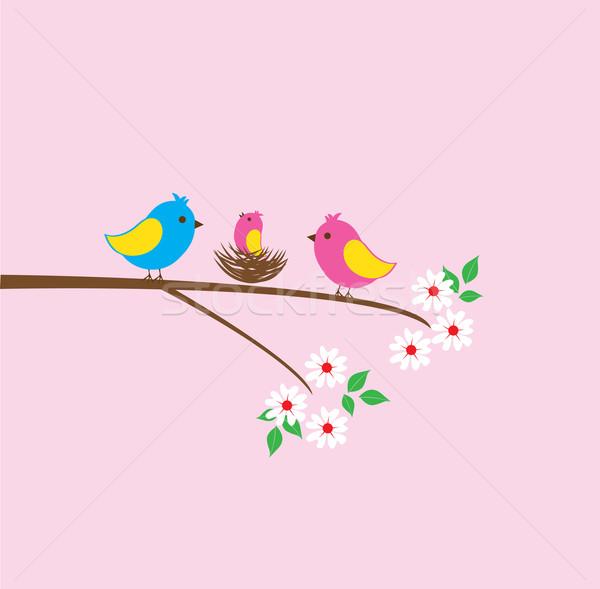 Wektora ptaków rodziny gniazdo szczęśliwy Zdjęcia stock © lilac
