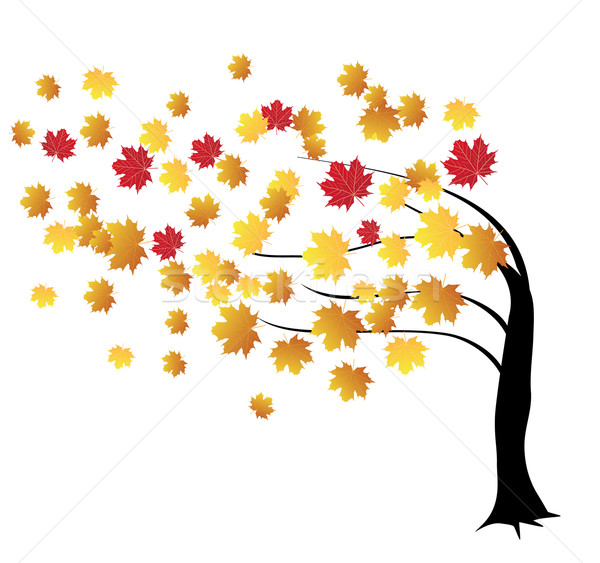 Stock photo: fall tree