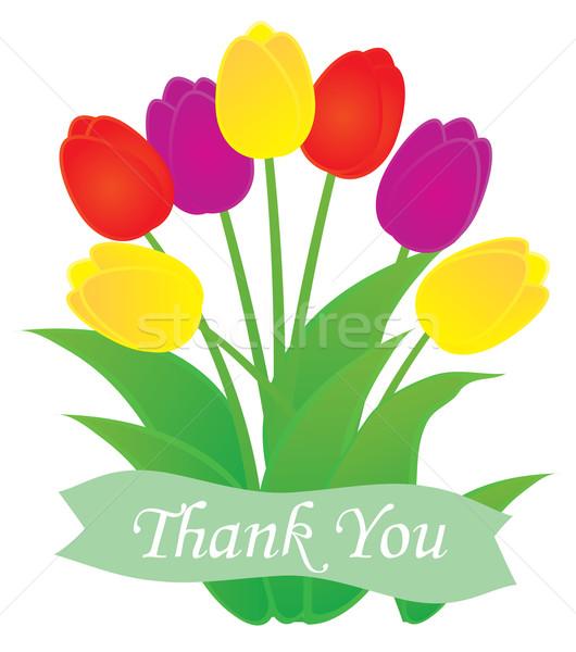 Obrigado cartão tulipas projeto folha espaço Foto stock © lilac