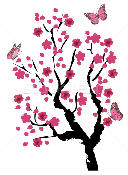 Kiraz çiçeği ağaç kiraz çiçek kelebekler kelebek Stok fotoğraf © lilac