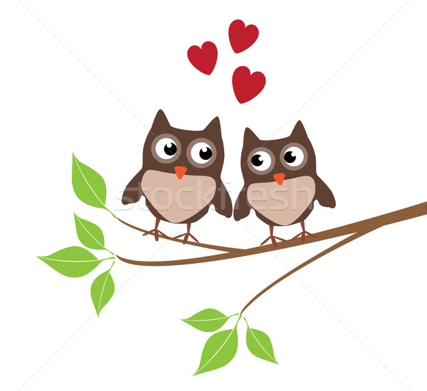 Owl Family Stock photo © lilac
