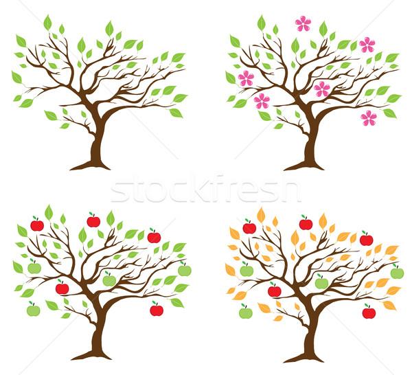 Vektör sezon elma ağacı dört elma ağaçlar Stok fotoğraf © lilac