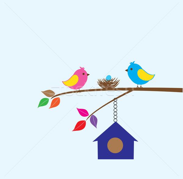 Stock fotó: Madár · család · vektor · madarak · fészek · ház