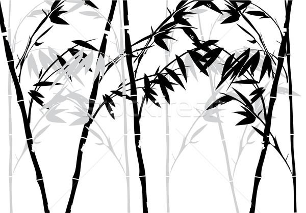 Bambu bitki ahşap soyut yaprak bahçe Stok fotoğraf © lilac
