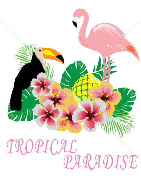 Vector Tropical Background Stock photo © lilac