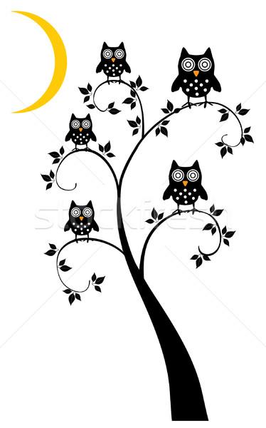 Baykuşlar vektör baykuş ağaç arka plan komik Stok fotoğraf © lilac