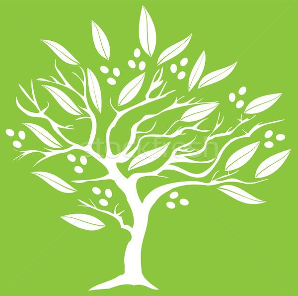 Olijfboom silhouet boom voedsel ontwerp blad Stockfoto © lilac