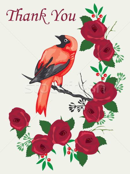 Teşekkür ederim kart kuş güller çiçek bahar Stok fotoğraf © lilac