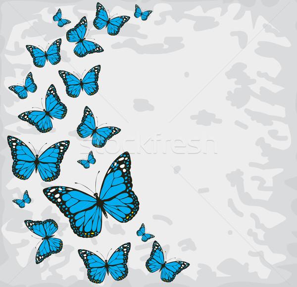 Vektör bağbozumu kelebekler renkli kelebek moda Stok fotoğraf © lilac
