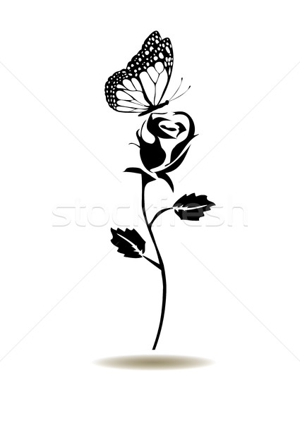 vector rose silhouette Stock photo © lilac