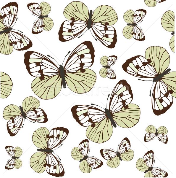 Vetor vintage cartão borboletas flor primavera Foto stock © lilac