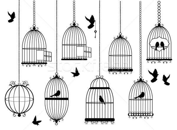 Vector aves vuelo aves casa diseno Foto stock © lilac