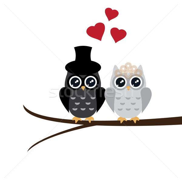 Owl Wedding Stock photo © lilac