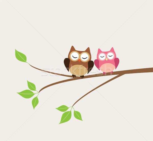Corujas vetor árvore fundo engraçado animal Foto stock © lilac
