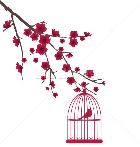 Kuş kafesi vektör ağaç kuşlar ev doğa Stok fotoğraf © lilac