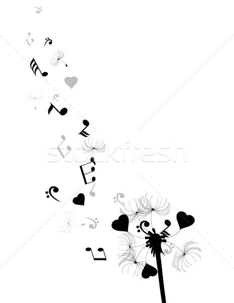 Dandelion Stock photo © lilac