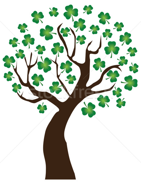 Shamrock Stock photo © lilac