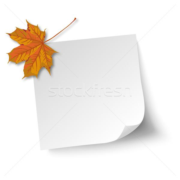 White Stick Maple Foliage Stock photo © limbi007