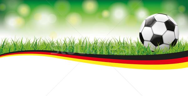 Football Grass Bokeh Header Germany Stock photo © limbi007
