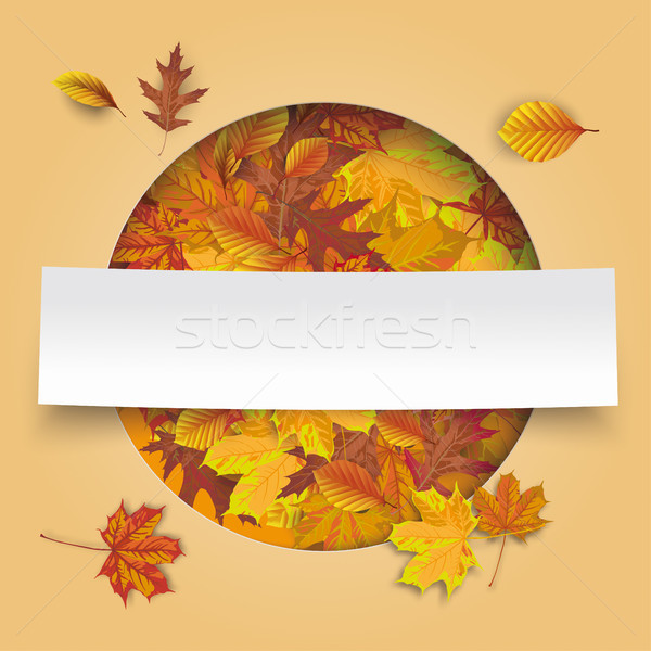 Autumn Cover Hole Foliage White Paper Banner Stock photo © limbi007