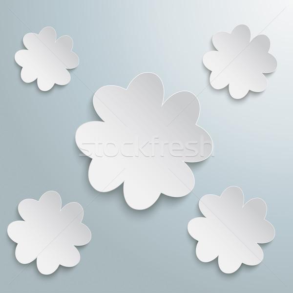 5 White Shamrocks Stock photo © limbi007