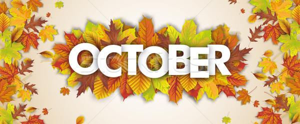 Herbst Laub fallen Kopfzeile Text eps Stock foto © limbi007