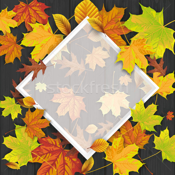 Black Wood Autumn Foliage Frame Stock photo © limbi007